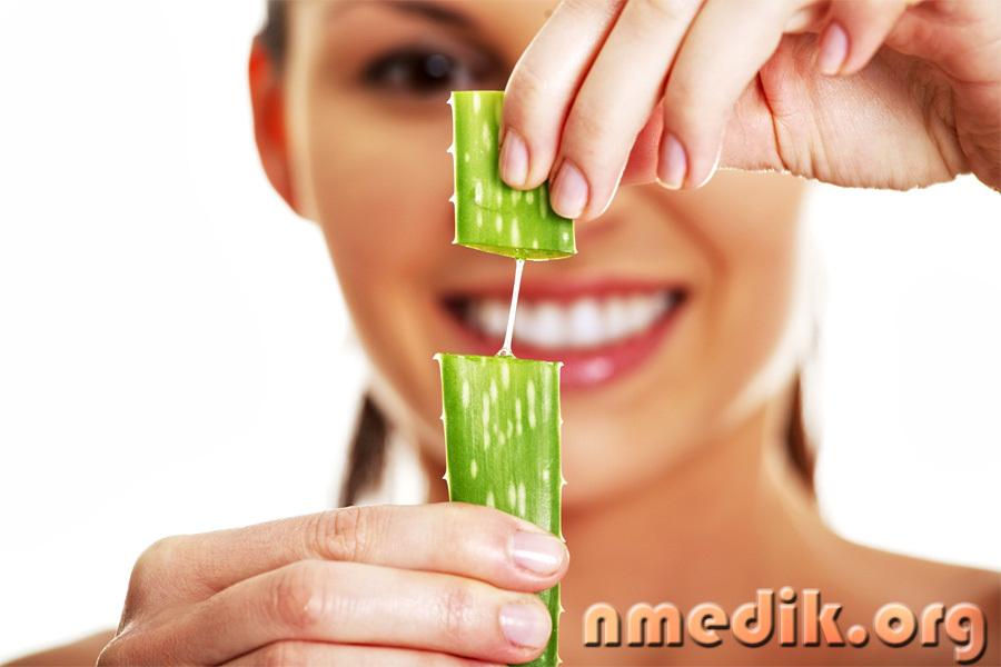 Сок алоэ - полезные свойства, получение и применение